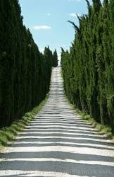 Cypress Parkway Italy