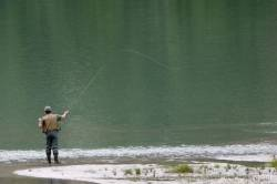 Fly Fishing Austria