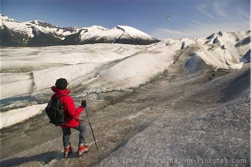 Glacier Heli Walk Tongass National Forest