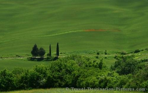 Holiday Destination Tuscany Italy