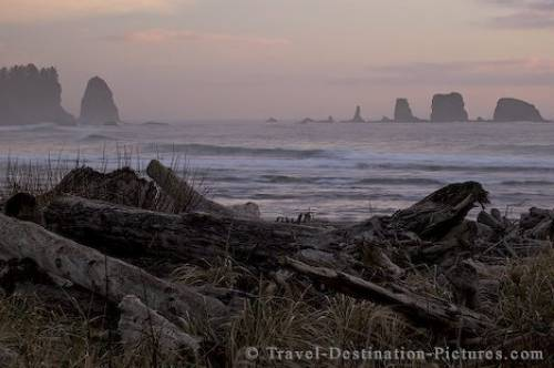 La Push Washington Olympic Peninsula USA